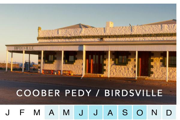 COOBER PEDY / BIRDSVILLE