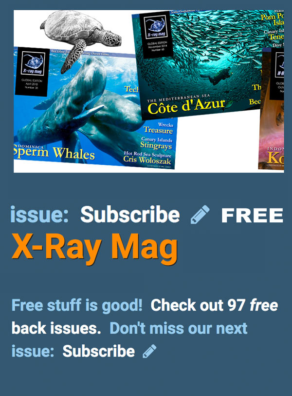 subscribe to x-ray magazine